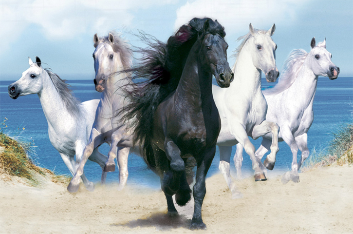 Древние лошади