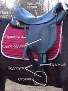 Вид седла