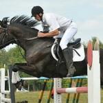Виды конного спорта: список и описание