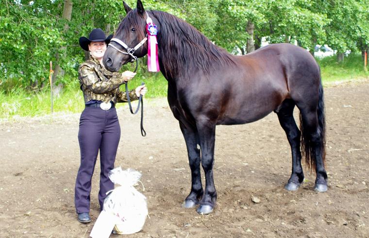 Канадская лошадь с хозяйкой