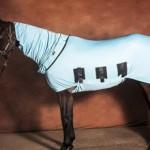 Попоны для лошадей: виды и типы, фото